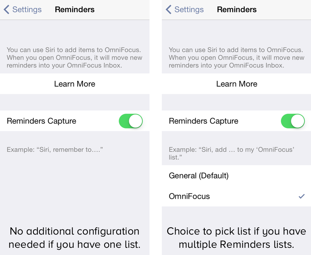 OmniFocus 2 for iPhone — Reminders Capture Settings