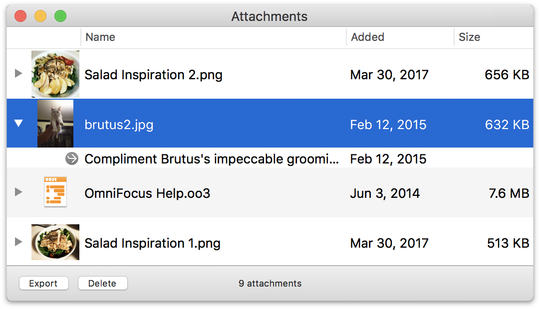 The Attachment List shows all of the files attached to your OmniFocus database