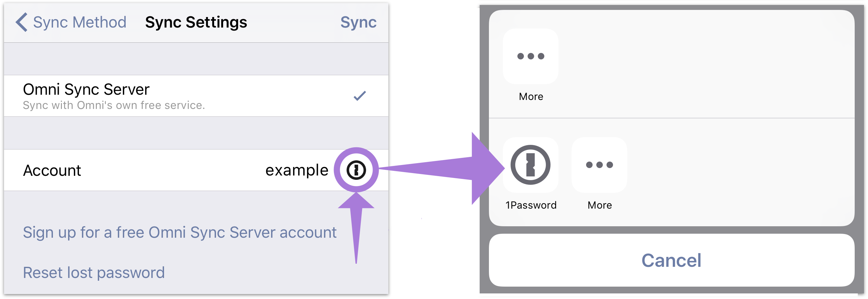 The Sync Settings screen with 1Password support available.