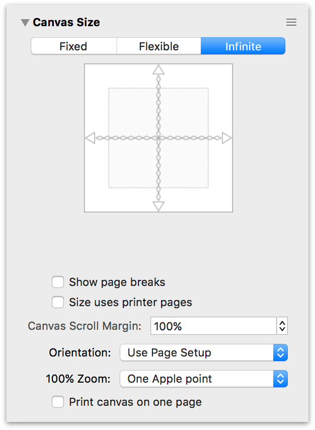 The Canvas Size inspector set to an Infinite Canvas