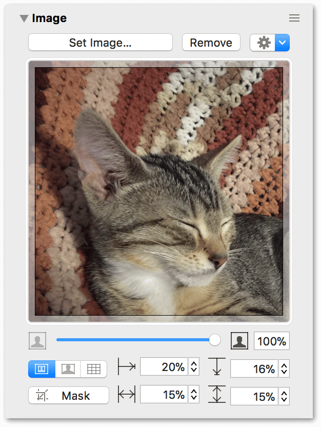 The Image Inspector