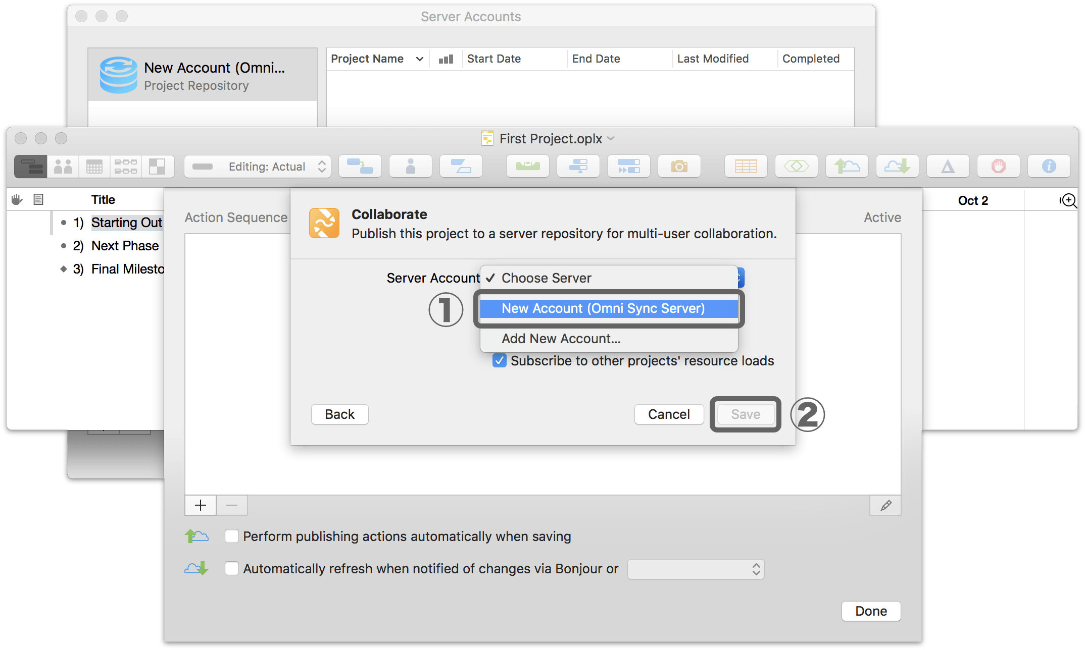 Setting up sharing options for a project in OmniPlan 3.10 for Mac, Step 3.