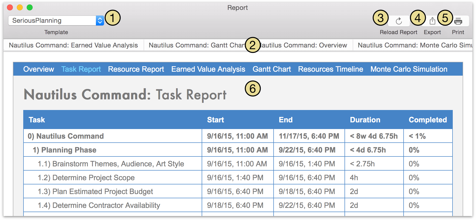 The Report window in OmniPlan Pro.