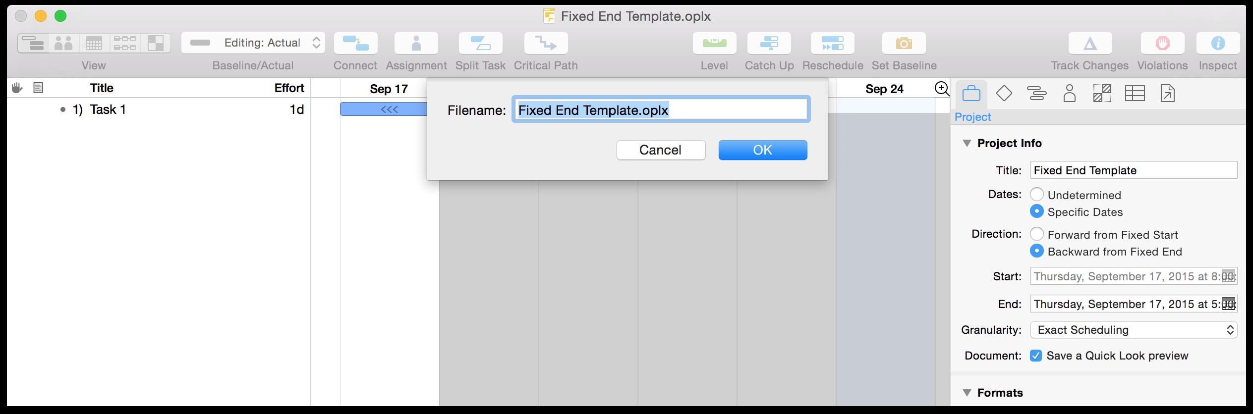 OmniPlan 3 for Mac User Manual - OmniPlan Preferences
